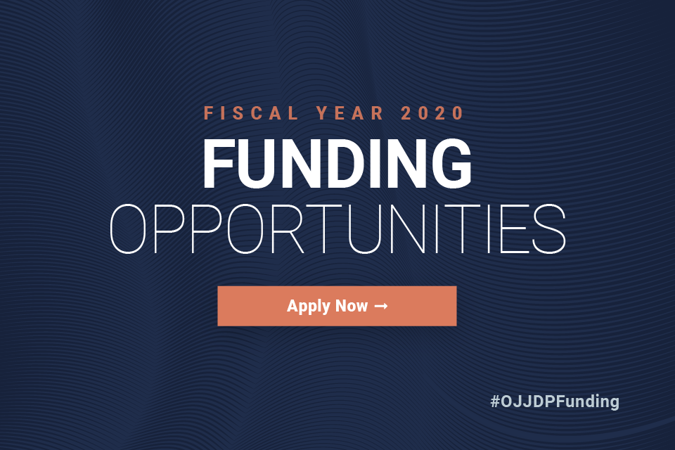 Fiscal Year 2020 Funding Opportunities. Apply Now.